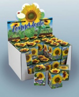 Greengift, Tournesol 40 pcs en Showbox